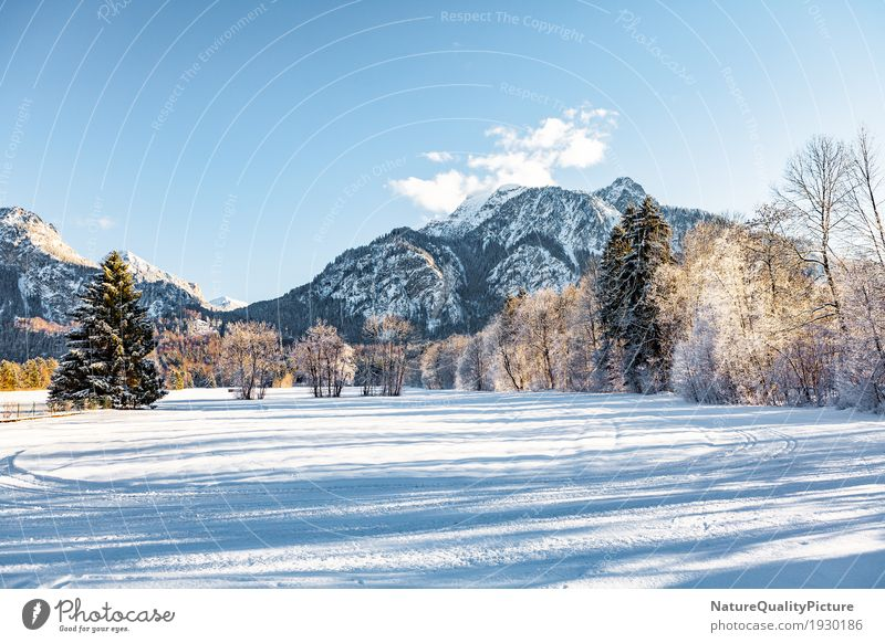 winter Himmel Natur Ferien & Urlaub & Reisen Pflanze Baum Landschaft Wolken Winter Wald Berge u. Gebirge Umwelt Hintergrundbild Schnee Felsen Park wandern