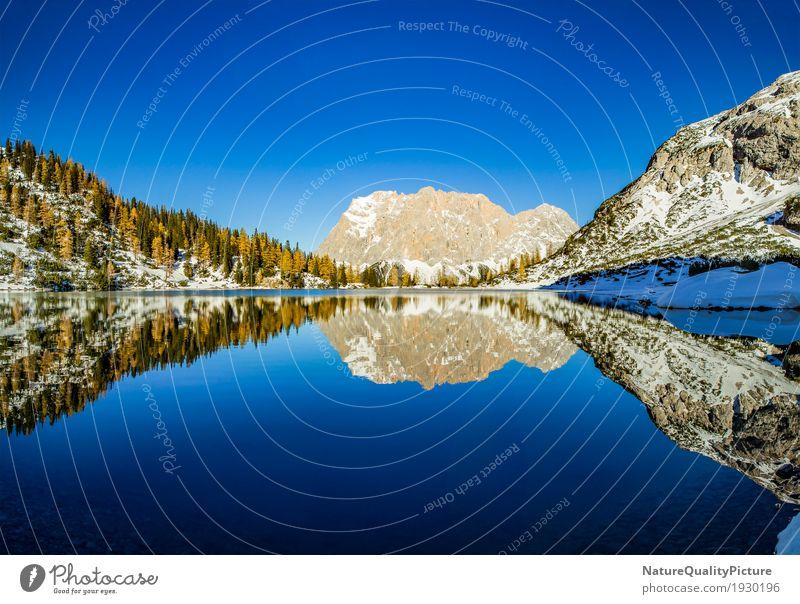 ehtwald - tirol - austria Himmel Natur Ferien & Urlaub & Reisen Wasser Baum Landschaft Winter Ferne Wald Berge u. Gebirge Wärme Umwelt Leben Herbst Wiese Schnee