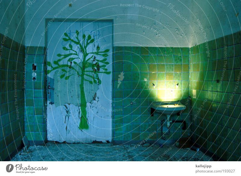frühlingserwachen? Natur Baum Pflanze Sonne Tier Blatt Haus Umwelt Landschaft Graffiti Leben Innenarchitektur Kunst Wohnung Klima Wachstum