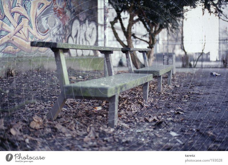 Nicht bequem, aber modern alt Stadt grün Blatt Farbe Erholung Herbst Wand grau Mauer Graffiti dreckig Beton leer Pause