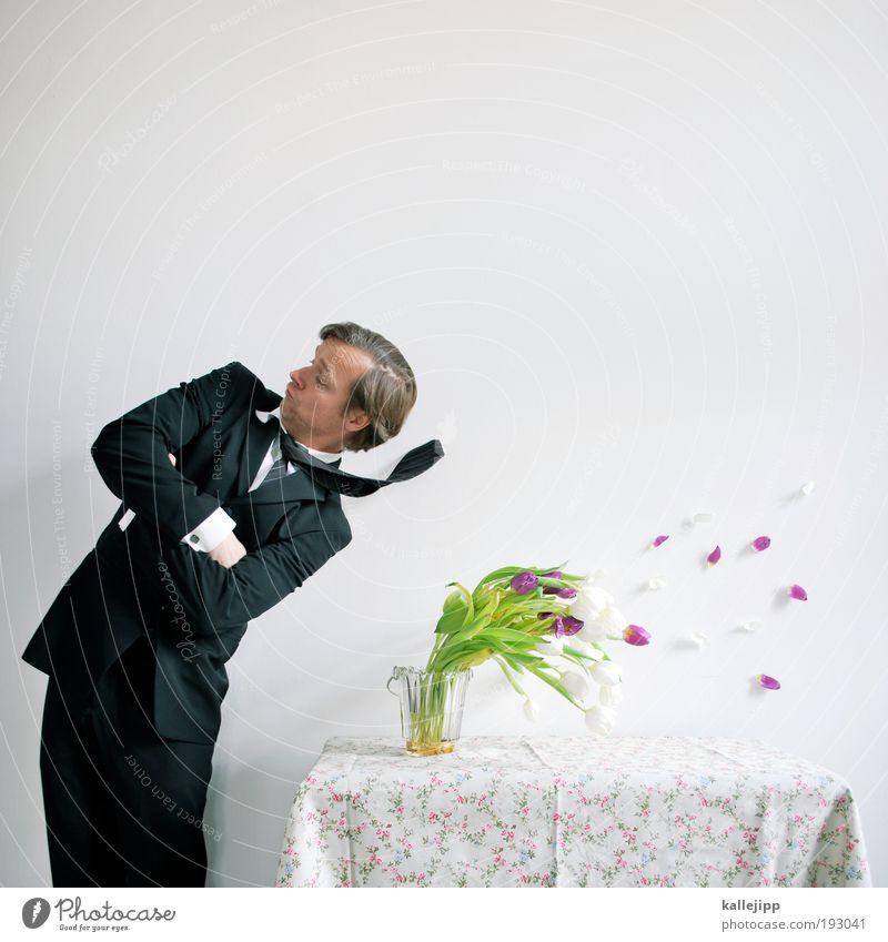 2900_bildersturm Lifestyle Feste & Feiern Valentinstag Geburtstag Mensch maskulin Mann Erwachsene 1 30-45 Jahre Pflanze Wind Sturm Tulpe Blüte Hemd Anzug