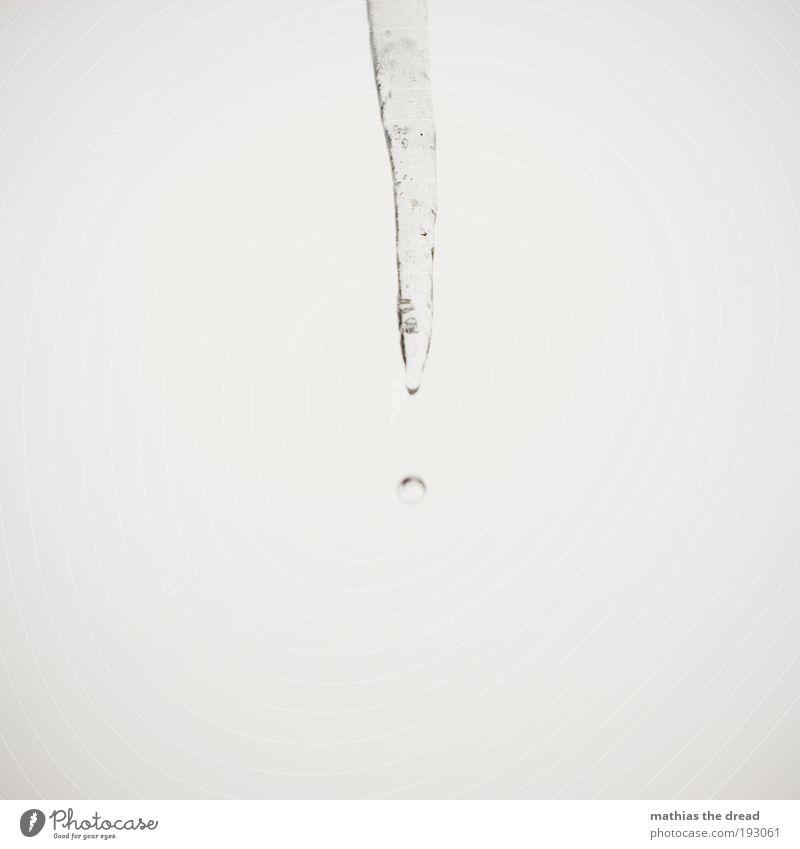 TROPFEN Natur Wasser schön weiß Winter kalt Schnee Eis Umwelt leer trist Frost fallen gefroren Urelemente Momentaufnahme