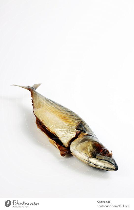 Räucherfisch Meer Lebensmittel Ernährung Fisch Tierhaut Küche Angeln Abendessen Fett Fischereiwirtschaft Flosse Schuppen Meerestier Freisteller Makrele