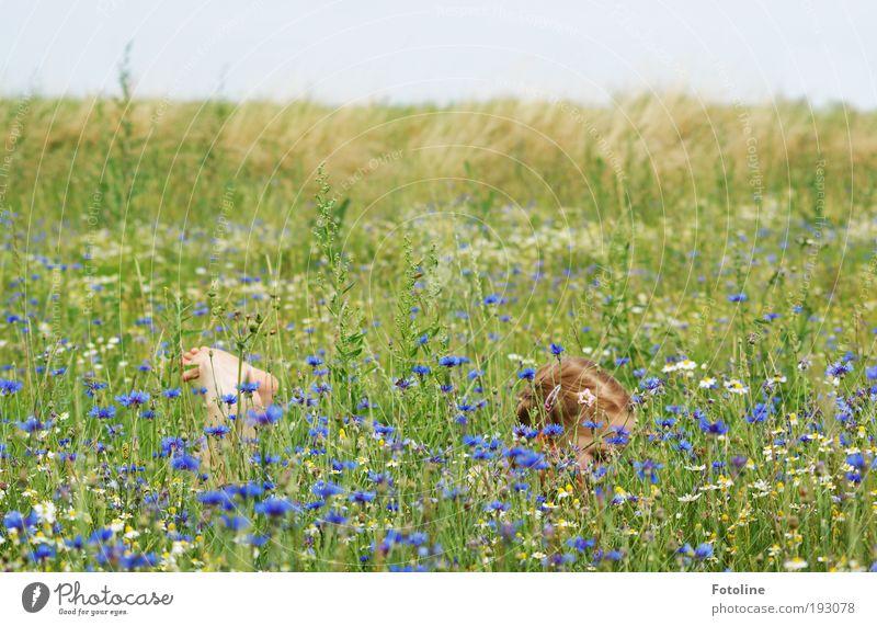 Vorfreude auf den Sommer Mensch Kind Natur Mädchen Himmel Blume Pflanze Sommer Wiese Gras Garten Kopf Park Wärme Landschaft Luft
