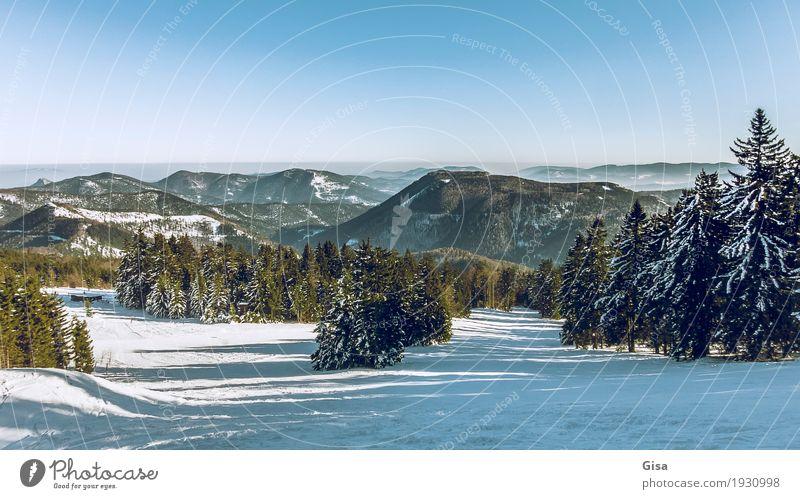 Blick vom Unterberg auf die Voralpen Schneewandern Skifahren Winter Landschaft Wolkenloser Himmel Schönes Wetter Alpen Berge u. Gebirge genießen außergewöhnlich