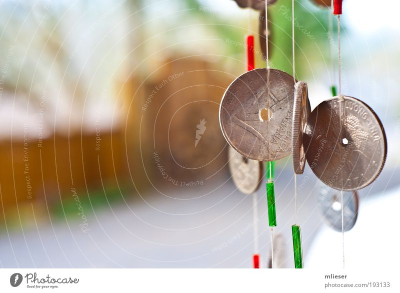 Münzen grün Geld Seil Kitsch Schnur Krimskrams