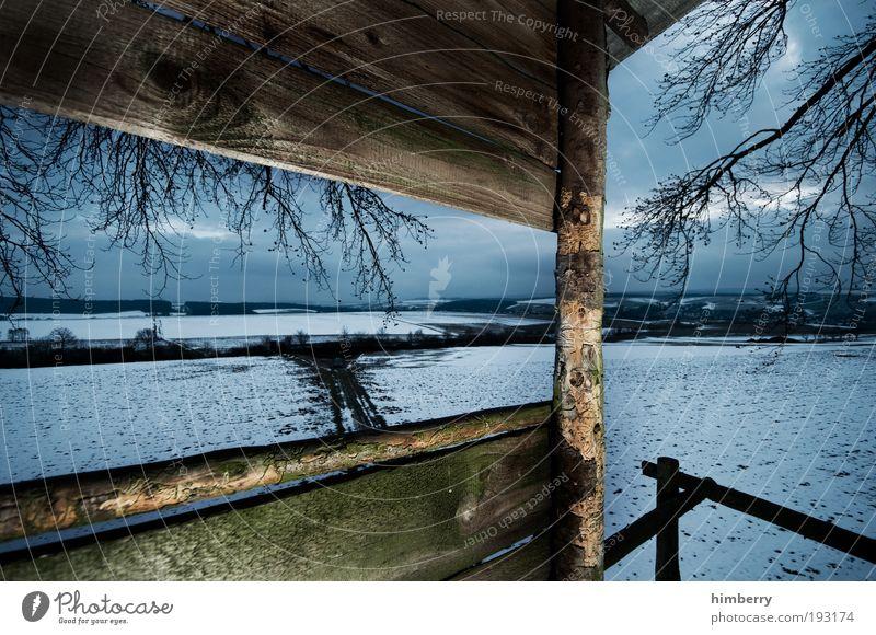 shotspot Jagd Umwelt Natur Landschaft Winter Klima Wetter Eis Frost Schnee Wiese Feld ruhig Jagdrevier Baumhaus Holzhaus Farbfoto mehrfarbig Außenaufnahme Licht