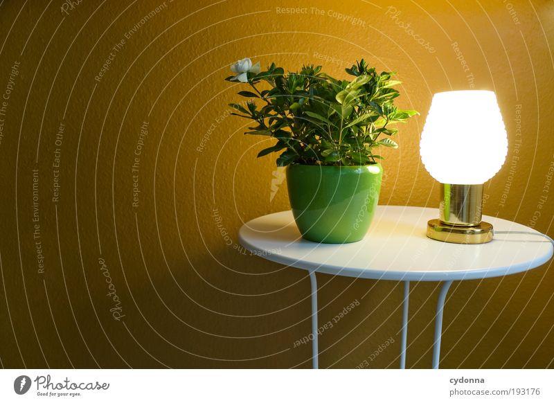 Lichttherapie Stil Design ruhig Dekoration & Verzierung Lampe Tisch Tapete Pflanze Topfpflanze Idee Leuchtkraft Farbfoto Innenaufnahme Menschenleer