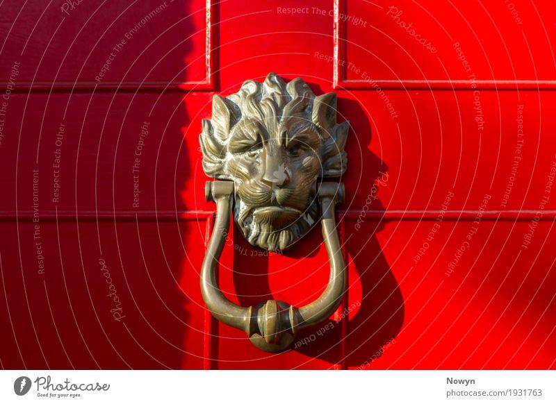 Lion Türklopfer Stil Design Häusliches Leben Wohnung Haus Hausbau Möbel Bauwerk Gebäude Architektur Klingel Sehenswürdigkeit Tier Tiergesicht Löwe Holz Metall