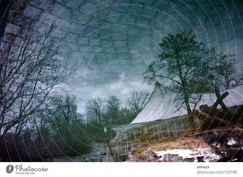 Das begrenzte Unendliche Himmel Baum Winter Haus Wolken Park Erde Sträucher außergewöhnlich Weltall Hütte Gewitter Gesellschaft (Soziologie) Terrasse Surrealismus falsch