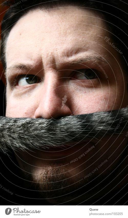 Luigi Mensch Mann Erwachsene Gesicht lustig maskulin außergewöhnlich 18-30 Jahre Bart Oberlippenbart Junger Mann