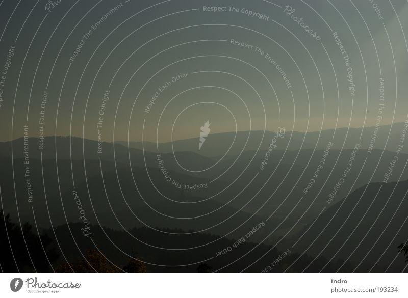 landschaft in grau Ferne Freiheit Berge u. Gebirge Umwelt Horizont Herbst schlechtes Wetter Nebel Wellen Stimmung schön Bewegung elegant Leichtigkeit