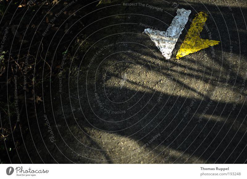 Nach vorn oder auch zurück ... weiß gelb Herbst grau Stein Wege & Pfade Kraft Schilder & Markierungen Beton Sicherheit trist Pfeil Zeichen Mut Richtung Verkehrswege