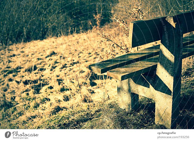 Sonnenbank Natur Einsamkeit Wald Wiese Zufriedenheit wandern Bank Warmherzigkeit Hügel Ende Schönes Wetter Fußweg Lebensfreude Ruhestand Erschöpfung Wege & Pfade