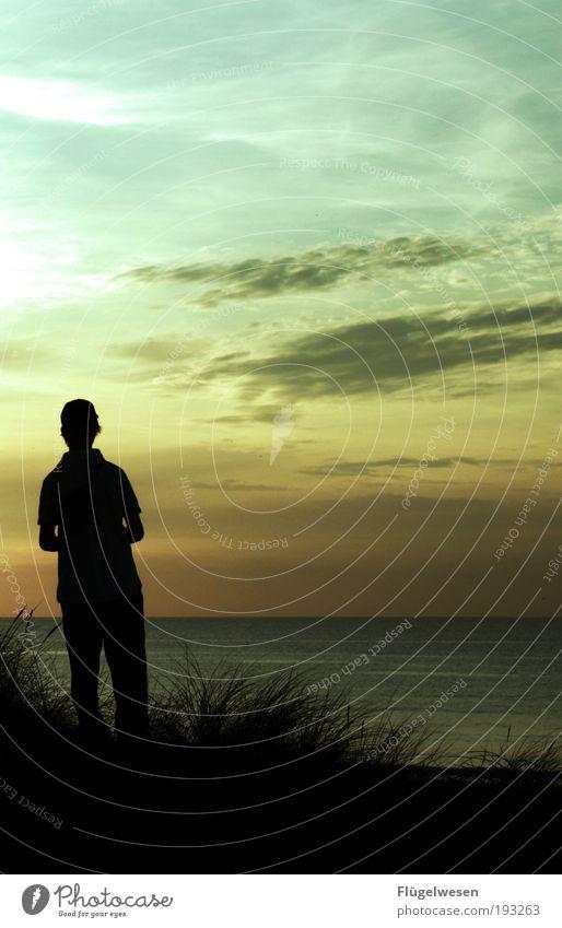 Liebt sie mich? Ferien & Urlaub & Reisen Pflanze Sommer Sonne Meer Ferne Strand dunkel Traurigkeit Küste Lifestyle Freiheit Schwimmen & Baden Horizont träumen