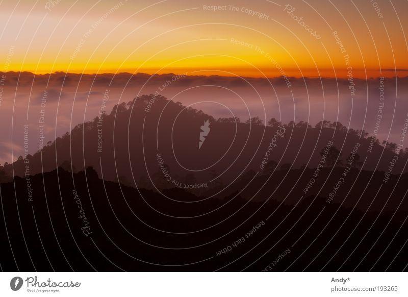 über den Wolken Himmel Natur Sonne Freude Ferien & Urlaub & Reisen Ferne Berge u. Gebirge Gefühle Erde Horizont Freizeit & Hobby Ausflug Insel Energie Tourismus