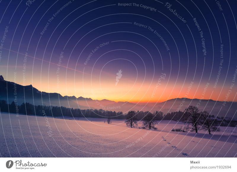 Sundown Samerberg Umwelt Natur Landschaft Himmel Wolkenloser Himmel Sonne Sonnenaufgang Sonnenuntergang Winter Wetter Schönes Wetter Schnee Feld Wald Hügel