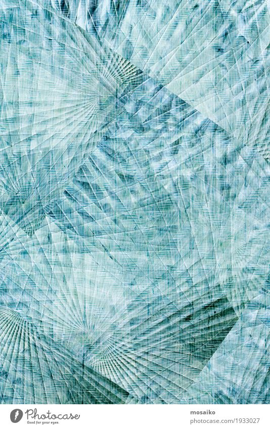 Texturen von tropischen Pflanzen Lifestyle elegant Stil Design exotisch Leben Kunst Gemälde Natur Rechtschaffenheit träumen blau gebrochen weiß graphisch