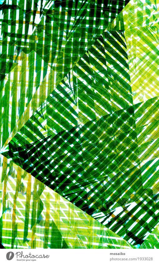 Texturen von tropischen Pflanzen Natur grün Leben Lifestyle natürlich Stil Kunst Design elegant ästhetisch Streifen streichen Wohlgefühl graphisch Gemälde