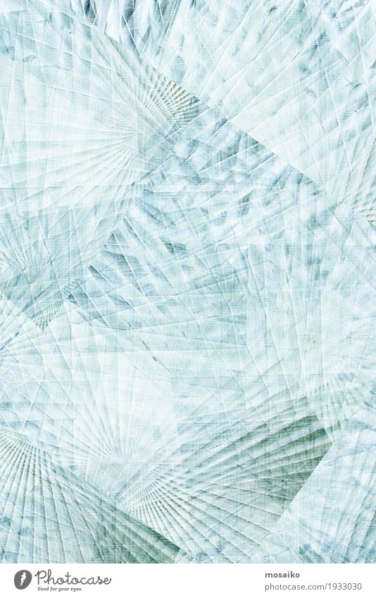 Textures of Tropical Plants Natur Pflanze blau weiß Beleuchtung Gefühle Lifestyle Stil Stimmung Design Eis elegant Grafik u. Illustration graphisch