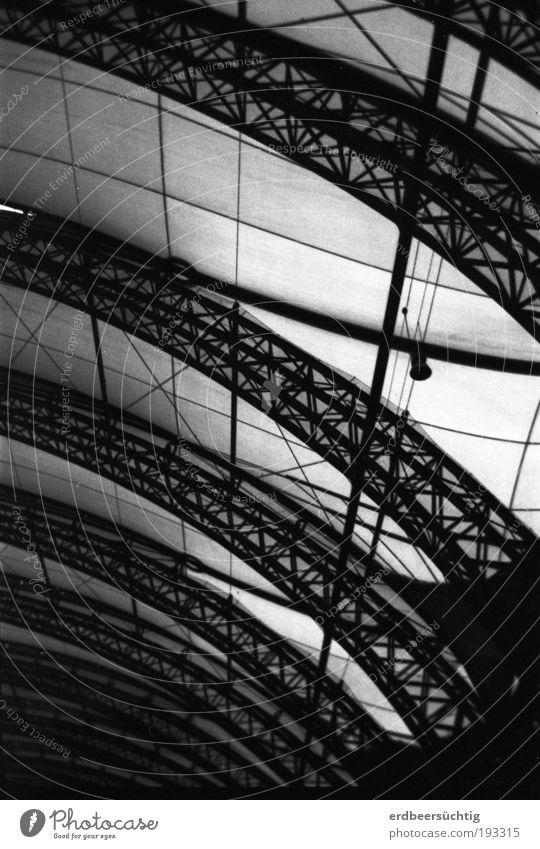 lines and curves Bahnhof Architektur Bahnfahren Schienenverkehr Bahnhofshalle Glas Stahl Netz dunkel Schatten Licht Gitter Torbogen Konstruktion Schwarzweißfoto