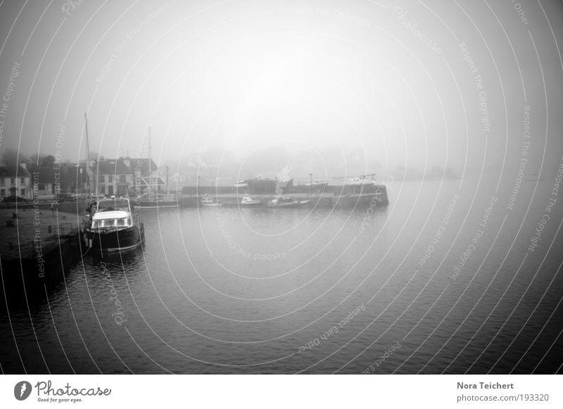 Im Nebel Natur Wasser Meer Pflanze Ferien & Urlaub & Reisen ruhig Haus Einsamkeit Tier Ferne träumen Landschaft Küste Angst Nebel Wetter