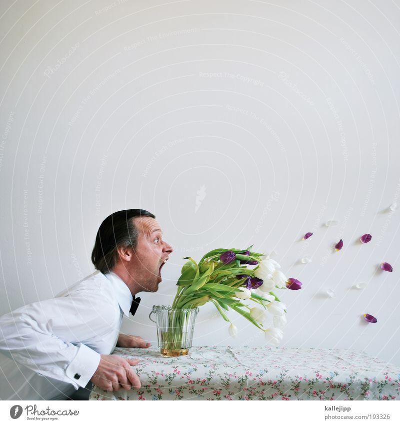 blatt vorm mund Lifestyle Häusliches Leben Mensch maskulin Mann Erwachsene Kopf Haare & Frisuren Gesicht Mund 1 Pflanze Tulpe Blatt Blüte schreien Wut Ärger