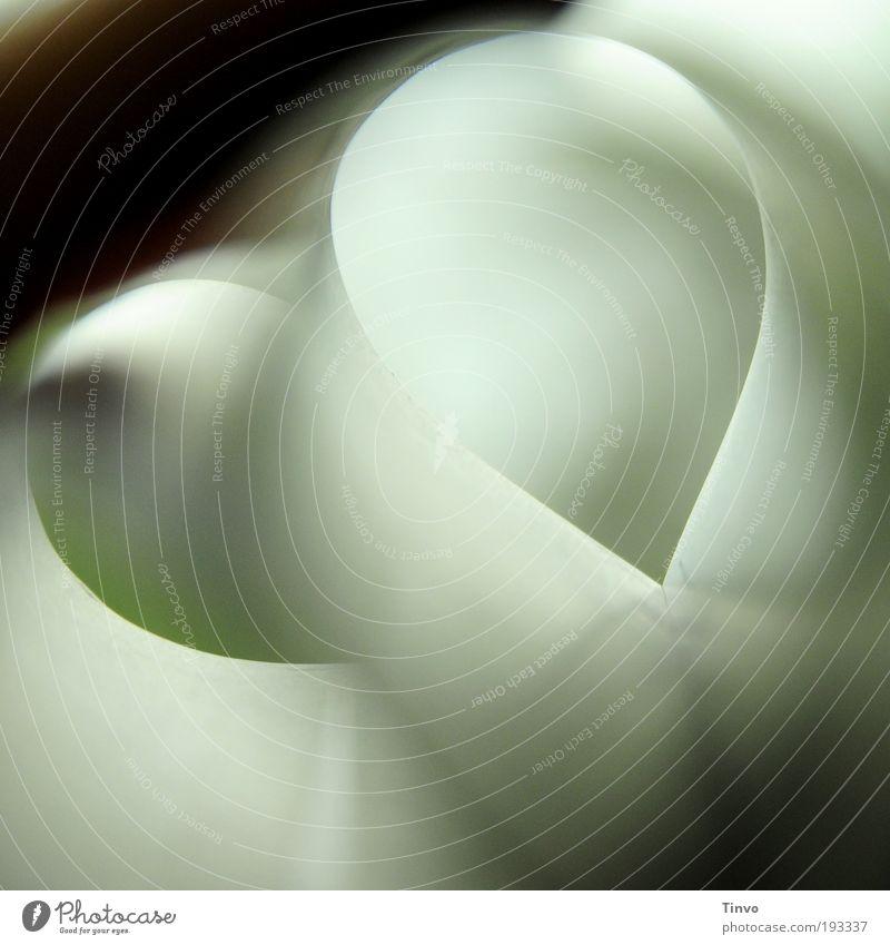 Herzflimmern einzigartig außergewöhnlich Experiment Idee Surrealismus Stil Schleife abstrakt Nahaufnahme herzförmig undefinierbar