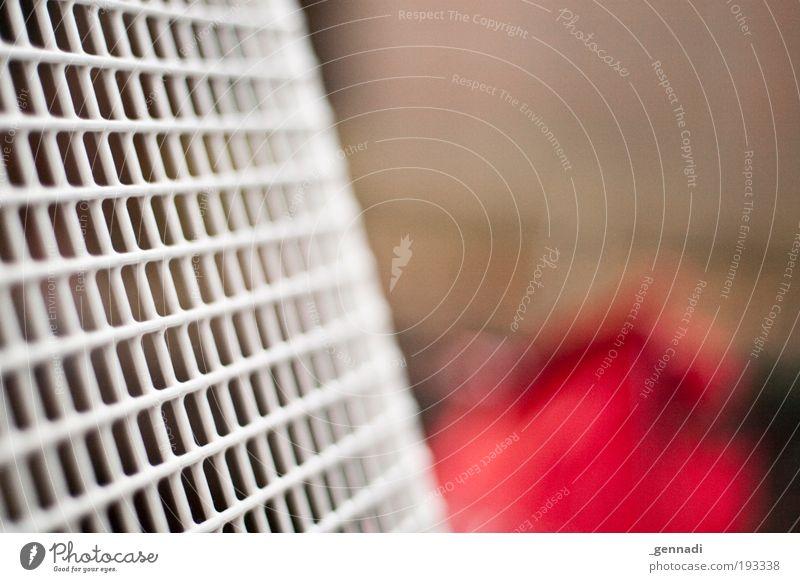 Ich hab Bok eh ruhig Erholung Freizeit & Hobby Sicherheit Stuhl genießen atmen hocken Kur Möbel Gitternetz
