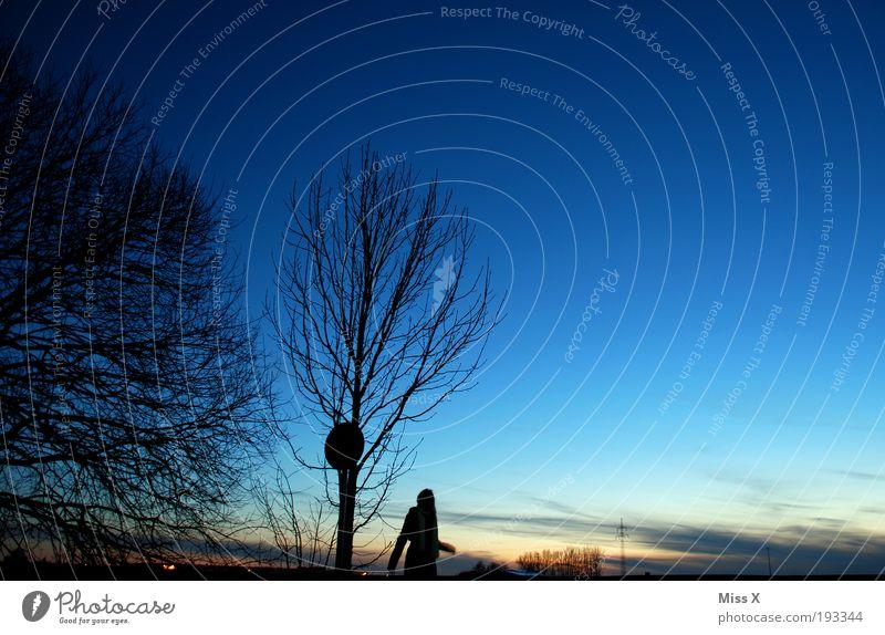Blaue Stunde wandern 1 Mensch Natur Landschaft Himmel Nachthimmel Horizont Winter Wetter Schönes Wetter Feld dunkel blau Romantik Hoffnung Spaziergang Dämmerung