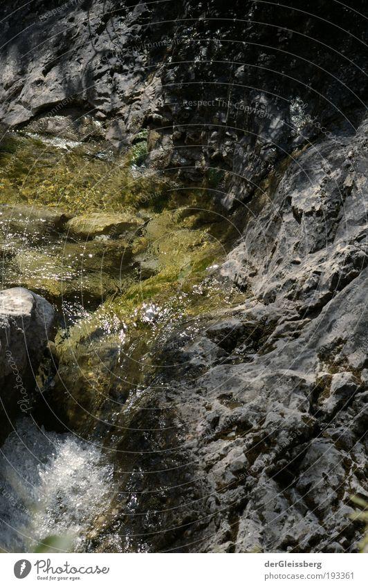 visuelle Erfrischung Natur Wasser weiß grün Sommer grau Felsen Geschwindigkeit Alpen Bach fließen Schlucht Berge u. Gebirge