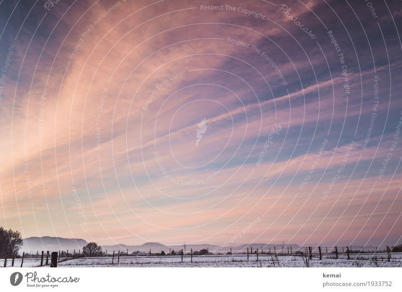 Wintermorgen Sinnesorgane ruhig Ausflug Ferne Freiheit Umwelt Natur Landschaft Himmel Wolken Schönes Wetter Eis Frost Schnee Feld Hügel Berge u. Gebirge