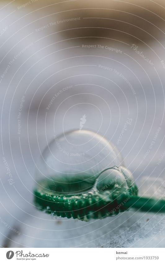 Frierend Freizeit & Hobby Spielen Seifenblase Winter Eis Frost Schnee außergewöhnlich frisch glänzend rund schön grün kalt gefroren Eisblase Farbfoto