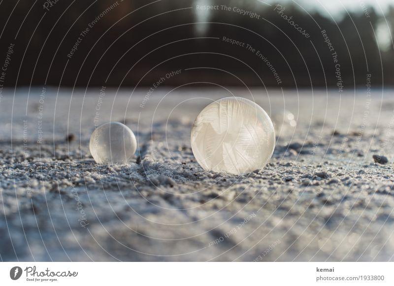 Kalt hoch 3 harmonisch ruhig Freizeit & Hobby Spielen Urelemente Luft Winter Schönes Wetter Eis Frost Seifenblase liegen außergewöhnlich frisch glänzend kalt