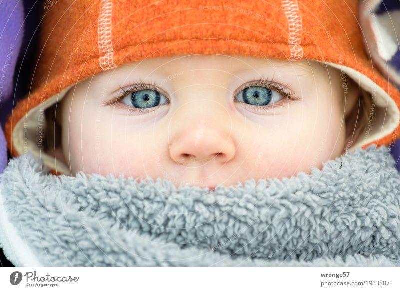 Winterkind Mensch Kind blau Mädchen Winter Gesicht Auge kalt grau orange Nase violett Mütze Kleinkind Gesichtsausschnitt Kinderaugen