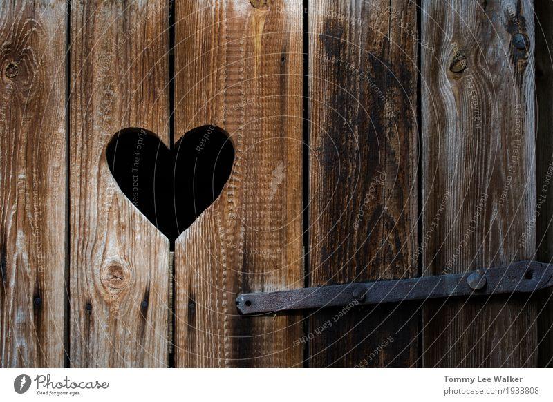 Liebe ist in der Luft Lifestyle Design Garten Dekoration & Verzierung Feste & Feiern Valentinstag Hochzeit Handwerk Säge Familie & Verwandtschaft Paar Park Holz