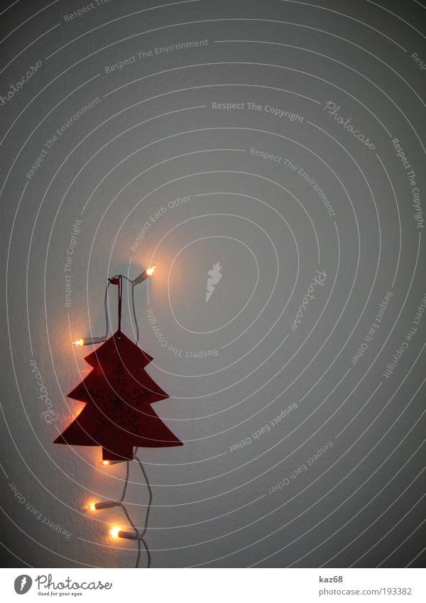 Alle Jahre wieder Tanne Baum Weihnachtsbaum Weihnachten & Advent Licht Dekoration & Verzierung rot Wand Feste & Feiern Dezember 24 Lichterkette festlich Lampe