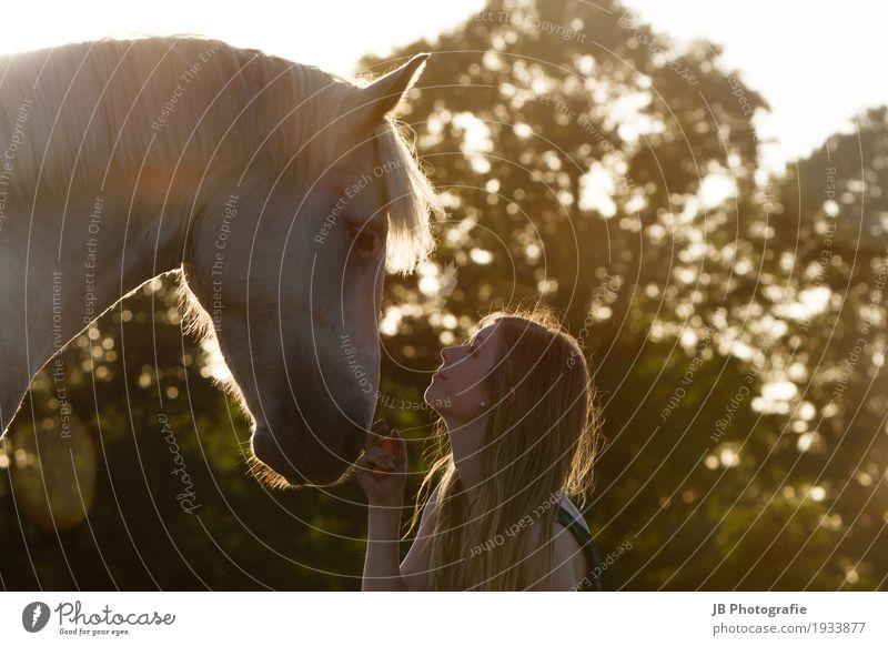 """""""Hey Dude"""" Reiten Sommer Sonne Reitsport Mensch feminin Junge Frau Jugendliche Haare & Frisuren Gesicht 18-30 Jahre Erwachsene Landschaft Himmel Sonnenaufgang"""