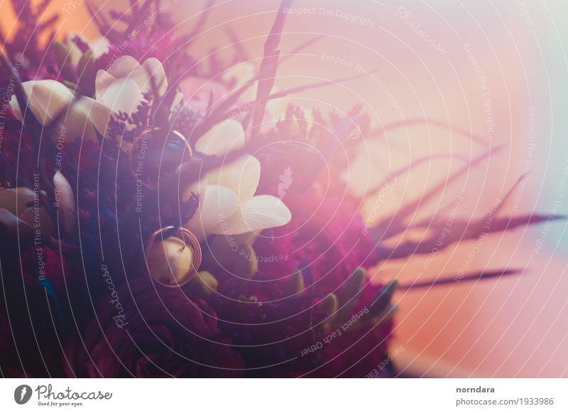 Brautstrauß Valentinstag Hochzeit Pflanze Blume Gras Rose Blatt Blüte Freundschaft Blumenstrauß Ring Farbfoto mehrfarbig Textfreiraum links