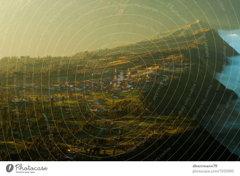 Licht, Schatten und Cemoro Lawang - Bromo am Morgen Natur Landschaft Ferne Berge u. Gebirge Lifestyle Wege & Pfade außergewöhnlich Freiheit Sand leuchten Luft