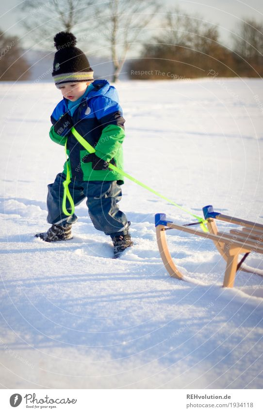 im tiefen schnee Mensch Kind Natur Sonne Landschaft Freude Winter Umwelt kalt Schnee Bewegung Junge Holz klein gehen maskulin