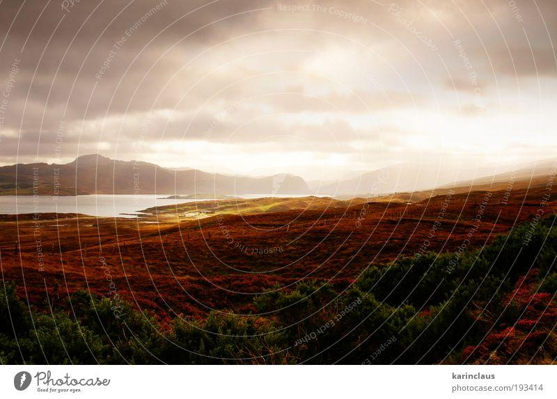 Natur Wasser grün Ferien & Urlaub & Reisen Wolken Farbe Herbst Landschaft braun Feld Küste Umwelt Tourismus Sträucher violett geheimnisvoll