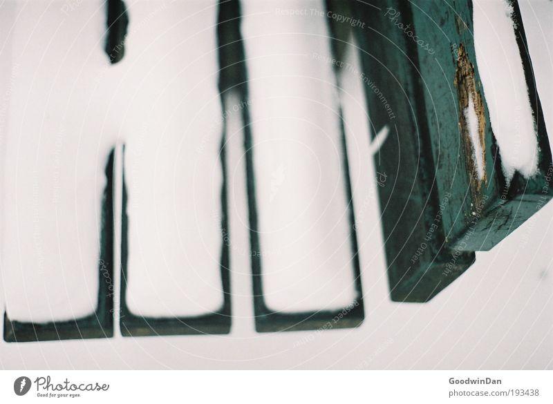 Analoge Winterbank Natur weiß grün kalt Schnee ästhetisch Bank entdecken leuchten knien
