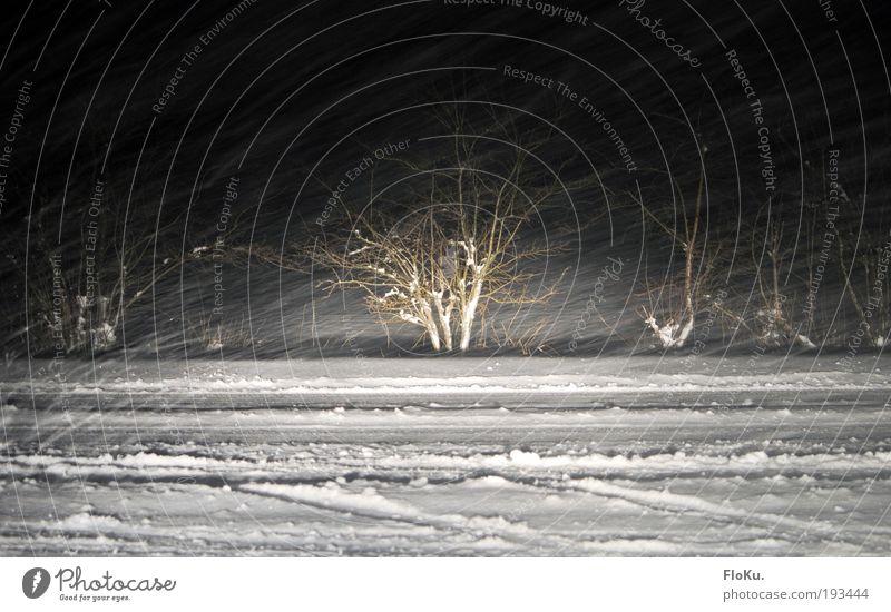 Schneesturm als Strichzeichnung weiß Winter schwarz Straße Schnee Wege & Pfade Umwelt Schneefall Eis Wetter Verkehr Frost Sträucher Urelemente Unwetter Autofahren