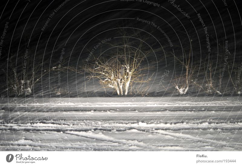 Schneesturm als Strichzeichnung weiß Winter schwarz Straße Wege & Pfade Umwelt Schneefall Eis Wetter Verkehr Frost Sträucher Urelemente Unwetter Autofahren