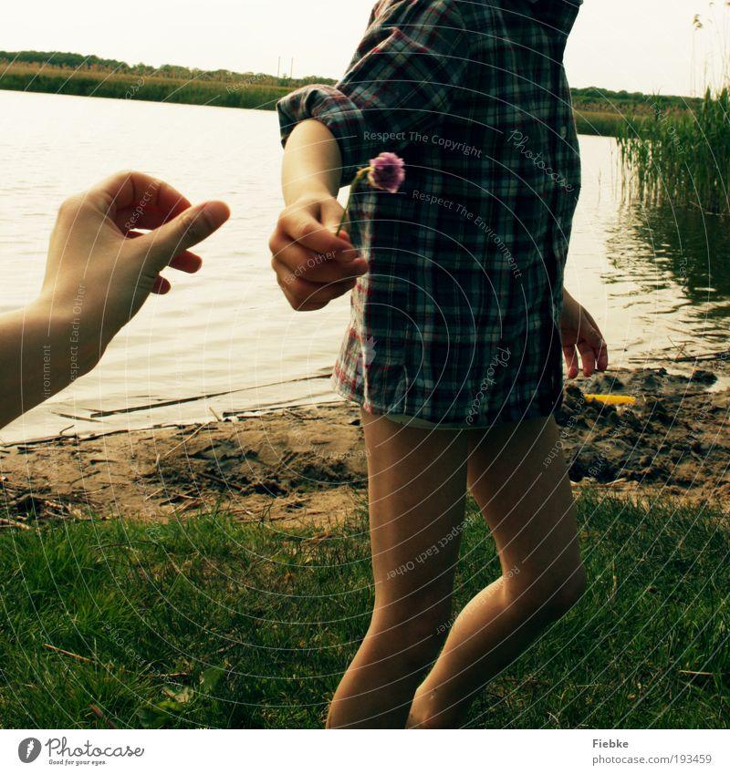Das Geschenk Freude Glück Ausflug Sommer Strand Mensch Familie & Verwandtschaft Freundschaft Kindheit Hand 2 Sand Wasser Blume Blüte Seeufer Flussufer Blühend