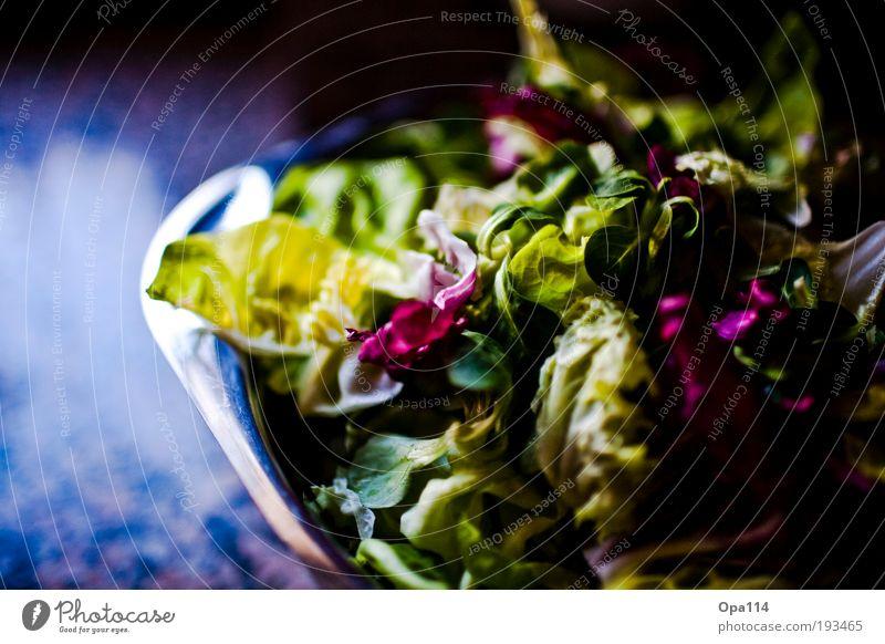 Salat Lebensmittel Salatbeilage Ernährung Vegetarische Ernährung Diät Schalen & Schüsseln frisch Gesundheit grün violett Leichtigkeit Farbfoto mehrfarbig
