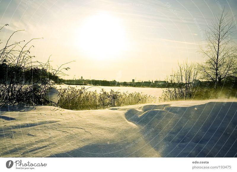Natur weiß Sonne Ferien & Urlaub & Reisen Winter kalt Schnee Umwelt Landschaft träumen Park Wetter Horizont Tourismus Europa Urelemente