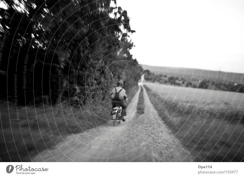 Born to be wild Natur Pflanze Sommer Wiese Umwelt Landschaft Wege & Pfade Kindheit Feld maskulin Abenteuer fahren Unendlichkeit Verkehrswege Motorrad