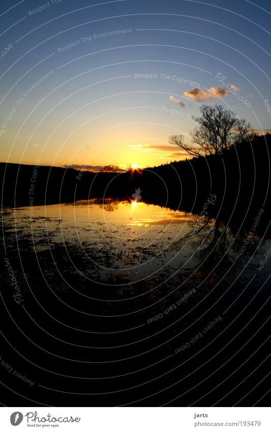 Hessisch Sunset Natur Wasser Himmel Baum Sonne ruhig Wolken Tier Freiheit Landschaft Zufriedenheit glänzend Wetter Umwelt Klima fantastisch
